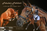 Pferdecollage